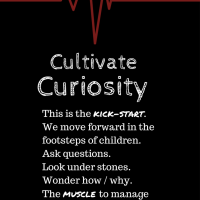 Curiosity: The MUSCLE Of Change