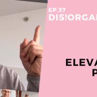 Dis!Organize Ep. 37: Elevator Pitch.